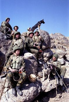 Soviet Army engineers pose with bomb-sniffing dogs in Afghanistan, c. 1980s. Pin by Paolo Marzioli