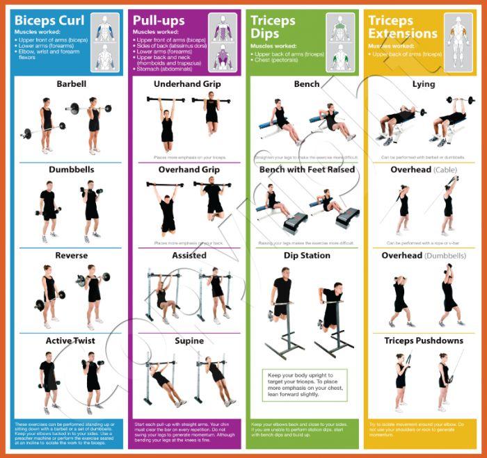Peak Arm Health Fitness Training