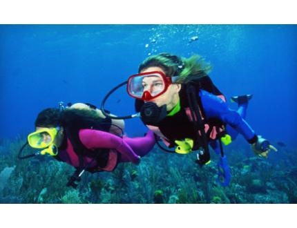 Up to 52% Off Scuba Certification in Schaumburg