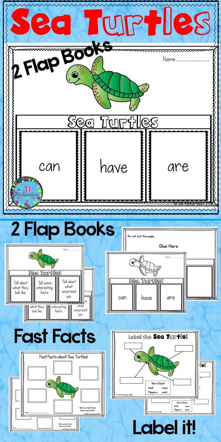 Have your children research sea turtles! This resource includes four ways for your children to share what they have learned about sea turtles in writing. TAKE A LOOK AT THE PREVIEW1 Two Sea Turtle Flap Book Choices – Pick your favorite to use! (color and black and white)  Sea Turtles: can, have, are Sea Turtles: Tell about what they look like, Tell some interesting facts, Tell about what surprised you. Sea Turtles Fast Facts (color and black and white) Label the Sea Turtle