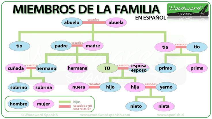 Miembros de la Familia en español - Members of the Family in Spanish - Video #ELE