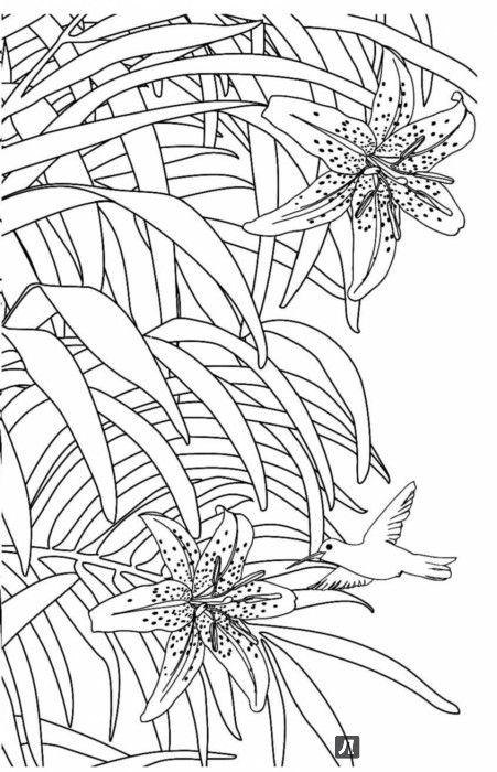 Иллюстрация 5 из 12 для Зачарованный сад. Мини-раскраска-антистресс | Лабиринт - книги. Источник: Лабиринт
