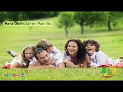 Alquiler de Fincas en La Vega-Desde 10 Pax-F185 https://youtube.com/watch?v=SDMyIU47VVc  #CasasCampestres #PaquetesTuristicos #AlquilerDeFincas #FincasParaAlquilar #FincasEnArriendo #AlquilerdefincasenelEjeCafetero #AlquilerdeCabañasEnMelgar #HotelesEnVillavicencio #FincasEnMelgar #FincasDeTurismo    Tel: 3228328-3213024788