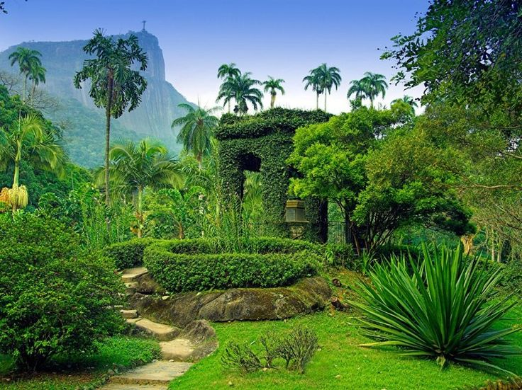 JARDIM BOTÂNICO Rio de Janeiro, Brazil Photos of the Worlds Most Beautiful Botanical Gardens : Condé Nast Traveler