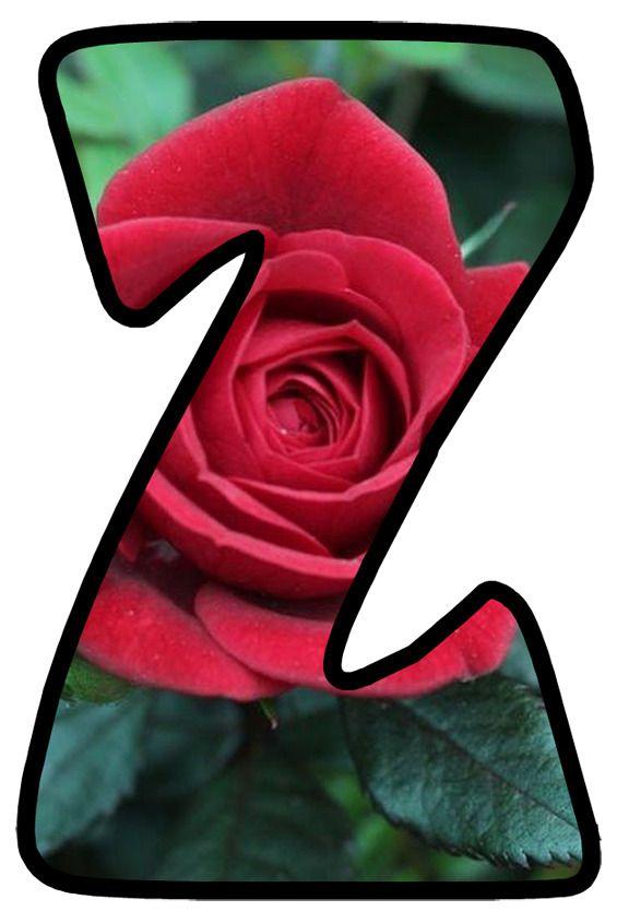 Buchstabe Letter Z Rose Flowers Floral