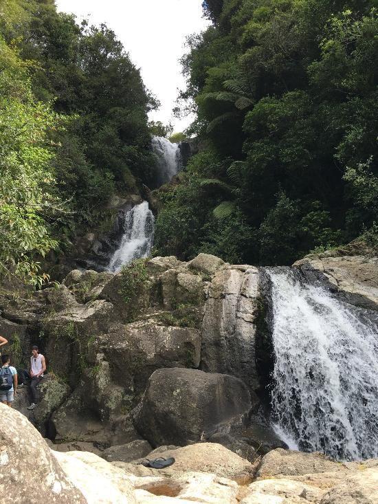 Kaiate Falls, Tauranga: See 117 reviews, articles, and 46 photos of Kaiate Falls, ranked No.9 on TripAdvisor among 72 attractions in Tauranga.