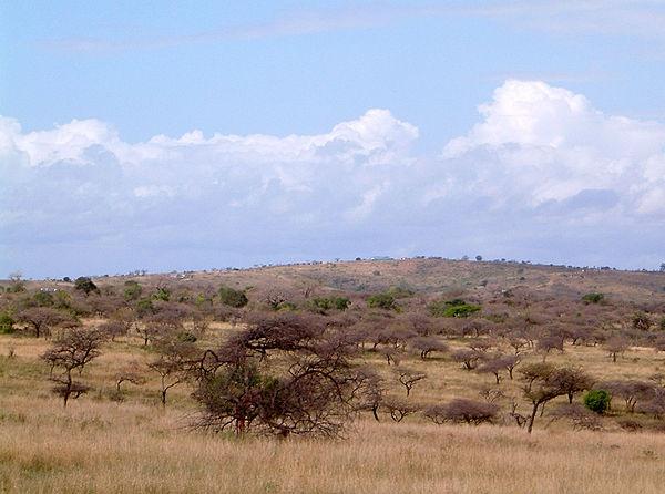 Hluhluwe–iMfolozi Park - Wikipedia, the free encyclopedia
