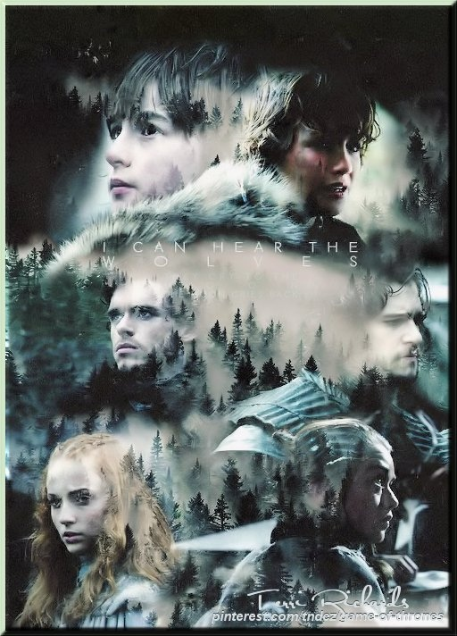 All 6 Stark Children..if only they could have all survived...says Darson of http://lady-ellen.com