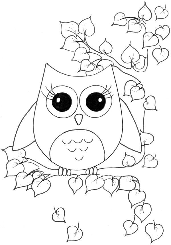 cute owcute owl colouring pages - Coloring Stencils
