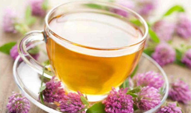 Relieve Your Anxiety With Valerian Tea
