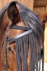 Stirnband Set mit Fliegenschutz
