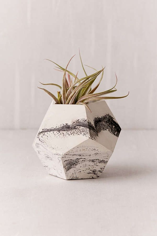 Concrete Geometric X UO Dodecahedron Marble Planter