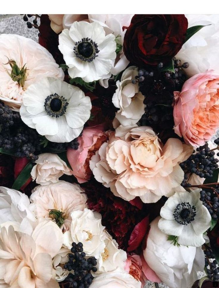 Learn More About Funeral Flowers Please Click Here To Read More Enjoy The Website Flowers Beautiful Flowers Pretty Flowers