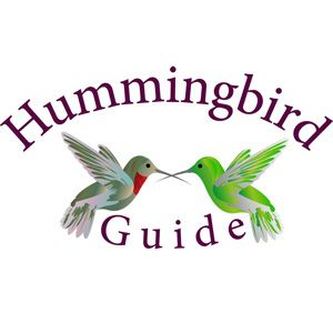 Do you love Hummingbirds? With our many years of personal experience with hummingbirds, you will find everything you need to attract and enjoy this captivating creature.