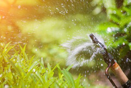 Bewässerungssystem selber bauen