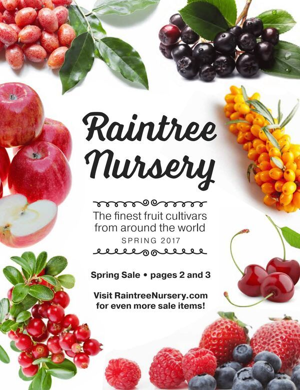 Here S A Huge List Of Free Plant And Seed Catalogs Find All Your Favorite Are Plus Some You Ve Probably Never Heard