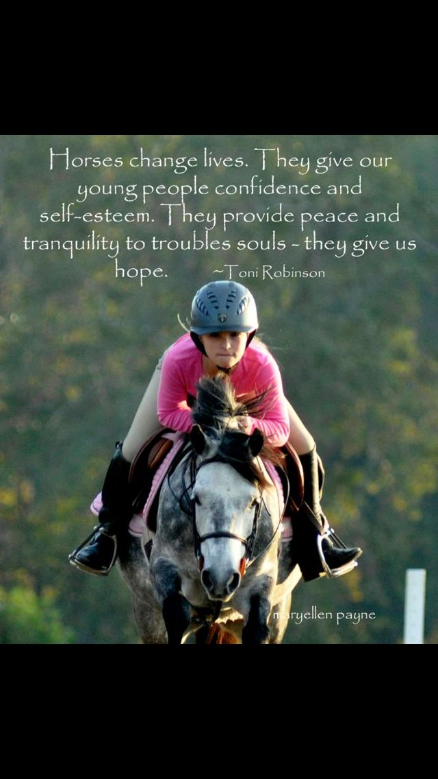 Horse saying