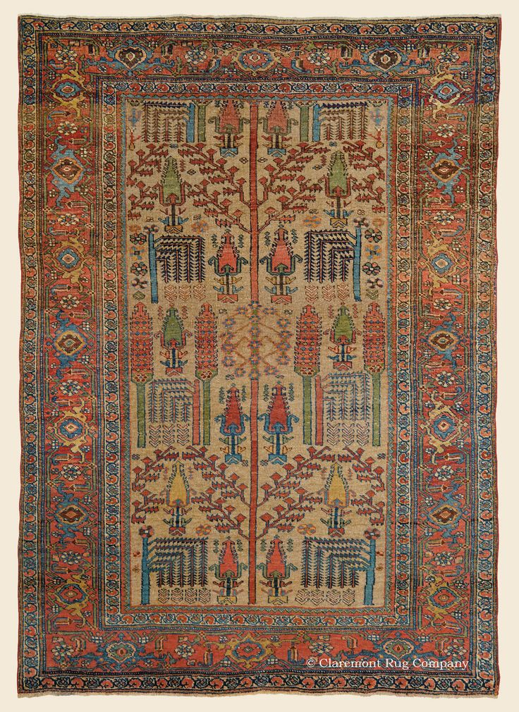 Elegant From Tribal Rugs To City Oversize Carpets.