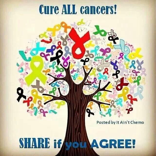Cancer Sucks Quotes: Notable Quotes & Pics