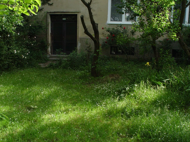 Mojmirova Backyard, Ruzinov (May 2008)