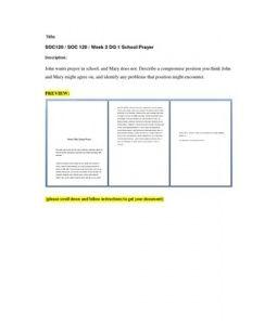 Joe wilson s courtship essay help