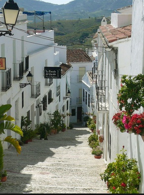 My friend Judy lived in Frigiliana. Nestled in the mountains in southern Andalucia, just a few miles north of the sea. Cobbled walkways lead to whitewashed houses, shops, cafes, flowers decorating the way. Beautiful place.