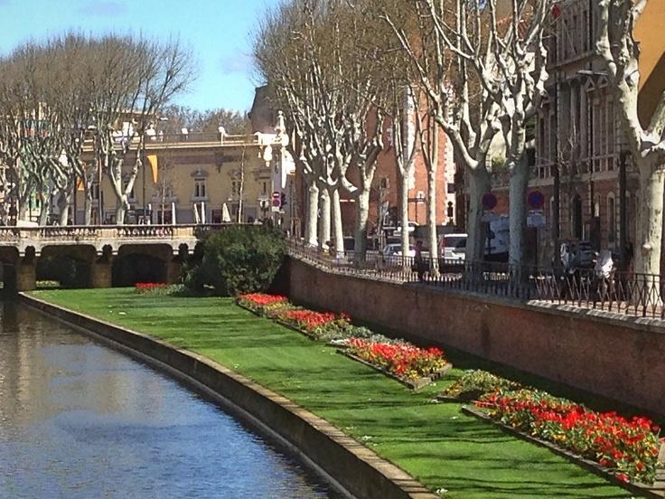 April Flowers in bloom in Perpignan