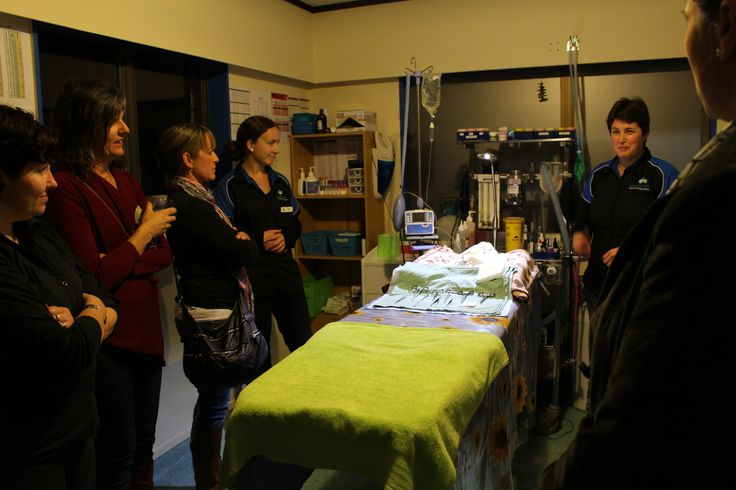 A few photo's from Green Drinks that we and Holistic Vets hosted. Everyone had some drinks and nibbles and got a tour of the clinic with some background info about everything. (this is the clinic's surgery room)