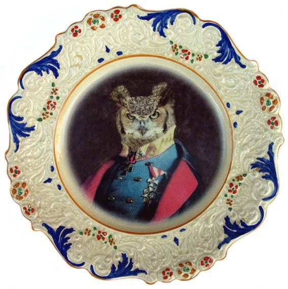 Altered Vintage Plate - Captain Strigiformes available at www.childrensdept.com.au