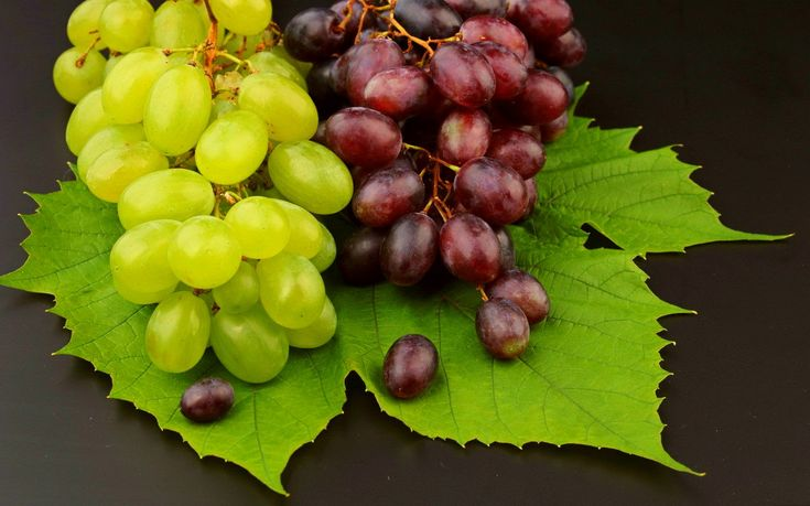 Grapes have different varieties and colors such as red, green, purple, and black.Grapes are tasteful and full of nutrition and vitamins like vitamin A B C, calcium, potassium, …