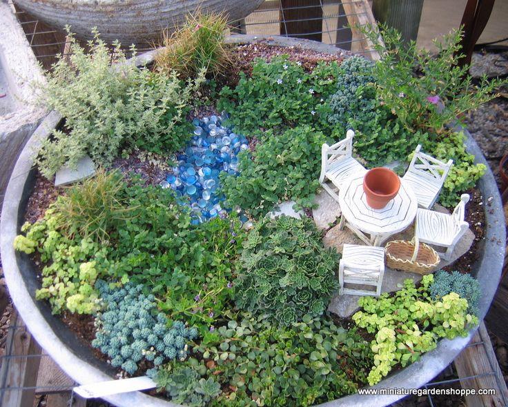 Best Mini Garden In A Vase Images On Pinterest