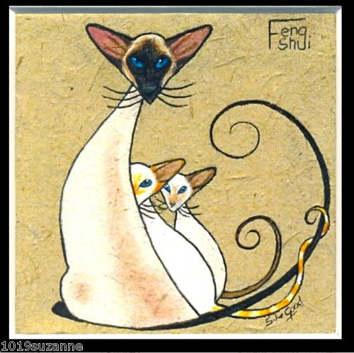 pointy siamese cat and kittens