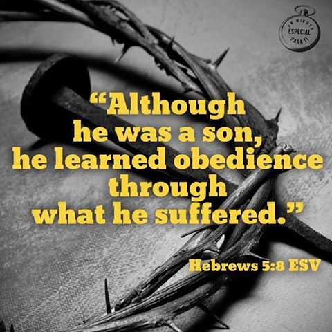 Hebrews 5:8
