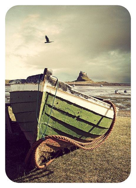 phoebesfavorites:    holy island by matthewheptinstall on Flickr.