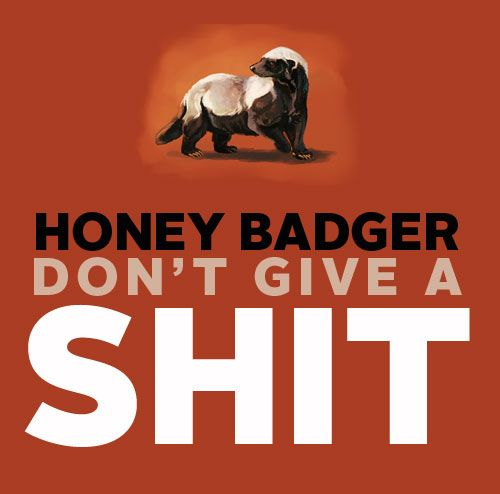 honey badger: Funny Funny, Favorite Boards, Dont Care, Fun Stuff, Funniest Things, Funny Stuff, Honey Badger, Favorite Quotes, Don'T Care
