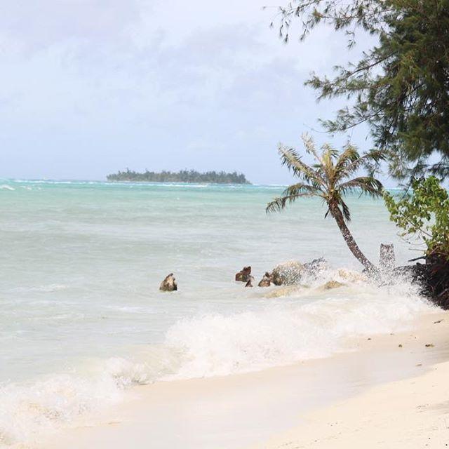 【n.rana0510】さんのInstagramをピンしています。 《島に行きたかったなぁ😭 心残りだからまたサイパンリベンジしよ🐠 #サイパン#マニャガハ島#海#子連れ旅行#子連れ海外#旅行日記#旅レポ#プールからのビーチ#ハイアットリージェンシー#癒された#ビーチフォト#ビーチ#beach#beachstyle #beachlover#beachday#Saipan》