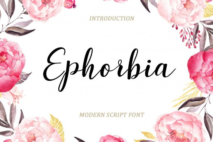$1 Ephorbia Script is a new modern script font with an irregular baseline. Trendy and feminine style. Ephorbia looks lovely on wedding invitations, thank you cards, quotes, greeting cards, logos, business cards and more. Perfect for using in ink or watercolour. Including initial and terminal letters, alternates, ligatures and multiple language support.
