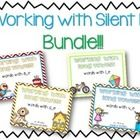 This pack includes all FOUR of my Silent E Pattern packs  Long A Silent E  Long I Silent E  Long O Silent E  Long U Silent E  Each pack contains:  ...