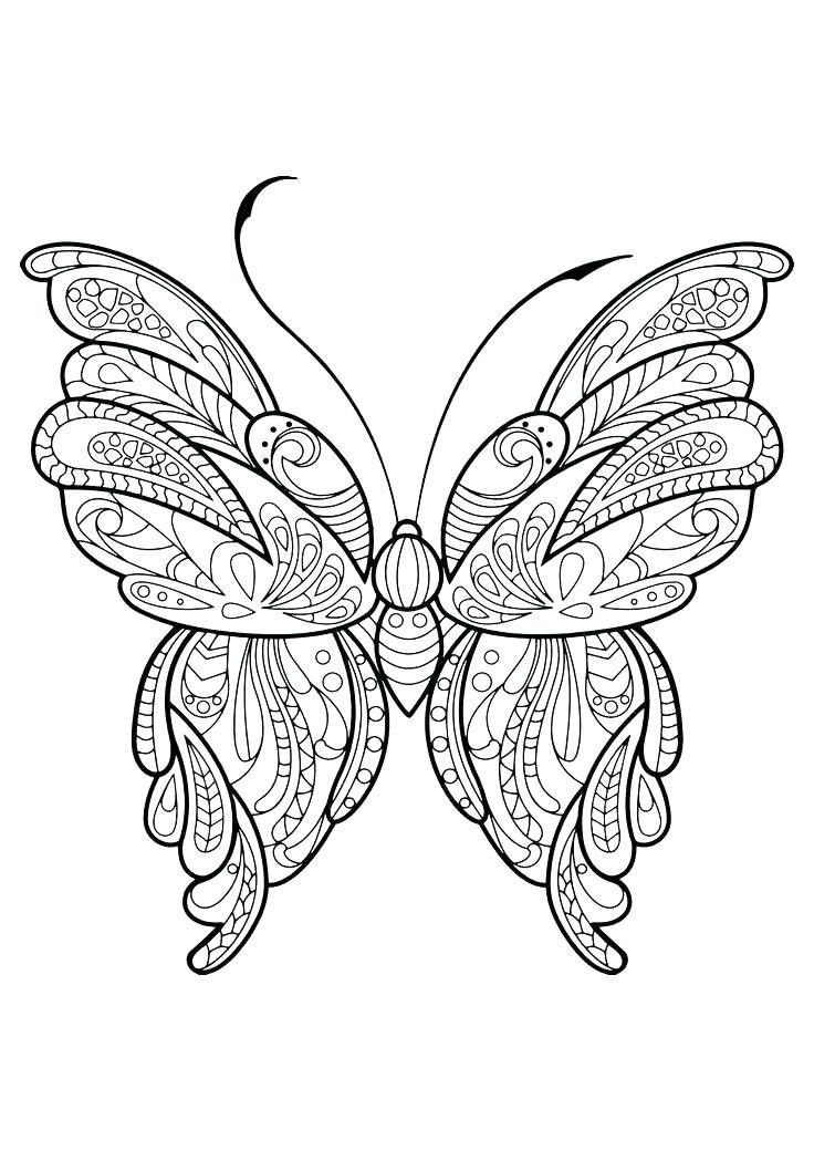 Butterfly Life Cycle Coloring Page Pdf Youngandtae Com In 2020 Butterfly Pictures To Color Butterfly Coloring Page Animal Coloring Pages
