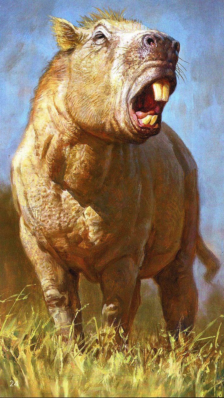 An illustration of the giant rodent <i>Josephoartigasia monesi</i>. The overgrown rodent was bigger than a buffalo and had giant teeth that it used like elephant tusks.