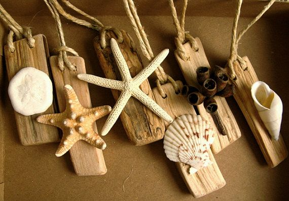 Driftwood and Shell beach house accents, ceiling fan pulls or ornaments, All natural wood and shells. Earth tones. Set of 6