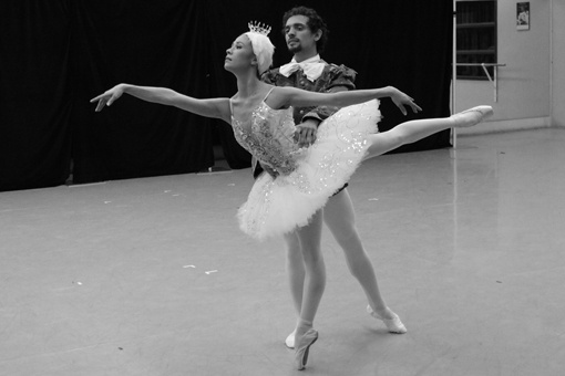 An excerpt from Bengt Jörgen's new production of Swan Lake. Photo by Christine Woolnough.