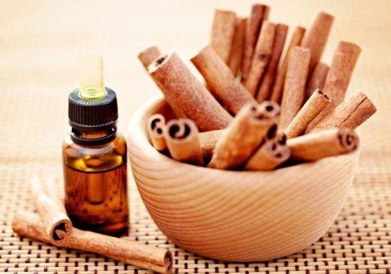 Cinnamon Essential Oil Sri Lanka Verum World Famous Protocol attacks Biofilms