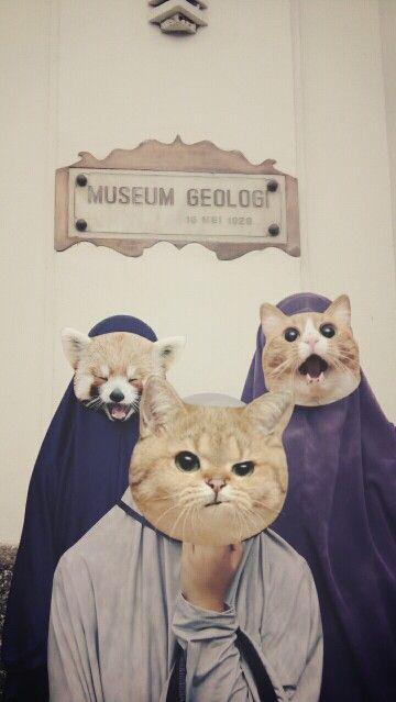 Museum Geologi Indonesia