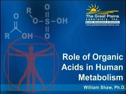 Interpretation of the Organic Acids Test by Dr William Shaw - YouTube