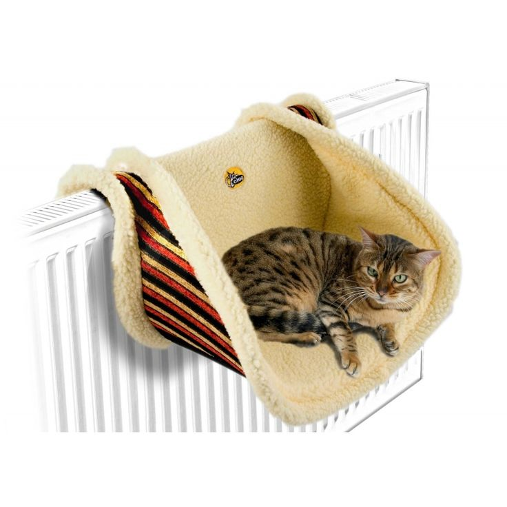 cleo deluxe radiator cat bed 2
