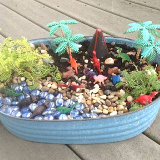 For the boys in your life, dinosaur garden in place of a fairy garden!