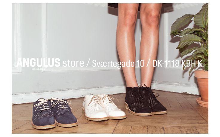 ANGULUS - The Official Online Shop DK