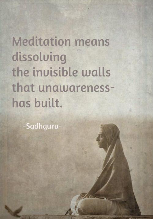 Meditation Means Dissolving the Invisible Walls That Unawareness Has Built. Sadhguru