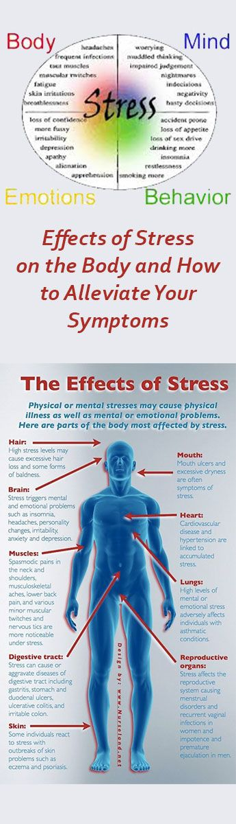describe how the body responds to stress essay Describe how the body responds to stress (6 marks) acute stress causes the arousal of the autonomic nervous system (ans) the ans comprises of the sympathetic nervous system (sns) which prepares the individual for 'fight or flight' and the parasympathetic branch, which returns the individual to their original state of relaxation.